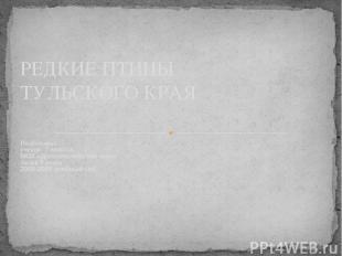 Подготовил ученик 7 класса МОУ «Долголесковская оош» Акаев Рамзан 2008-2009 учеб
