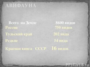 Всего на Земле 8600 видов Россия 750 видов Тульский край 202 вида Редкие 54 вида