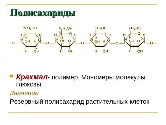 Полисахариды Крахмал- полимер. Мономеры молекулы глюкозы. Значение Резервный полисахарид растительных клеток
