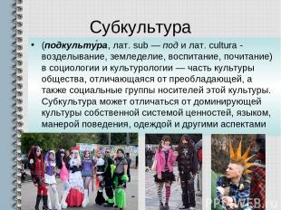 Субкультура (подкульту ра, лат. sub — под и лат. cultura - возделывание, земледе