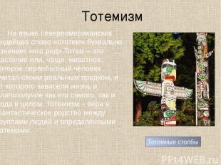 Тотемизм На языке североамериканских индейцев слово «ототем» буквально означает