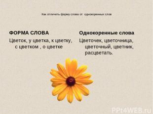Как отличить форму слова от однокоренных слов ФОРМА СЛОВА Цветок, у цветка, к цв