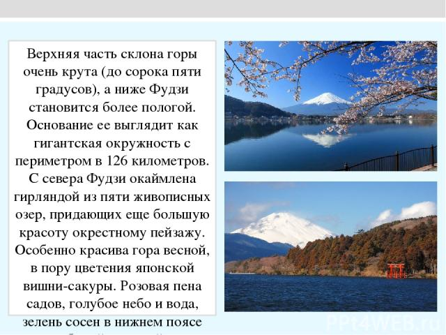 Верхняя часть склона горы очень крута (до сорока пяти градусов), а ниже Фудзи становится более пологой. Основание ее выглядит как гигантская окружность с периметром в 126 километров. С севера Фудзи окаймлена гирляндой из пяти живописных озер, придаю…