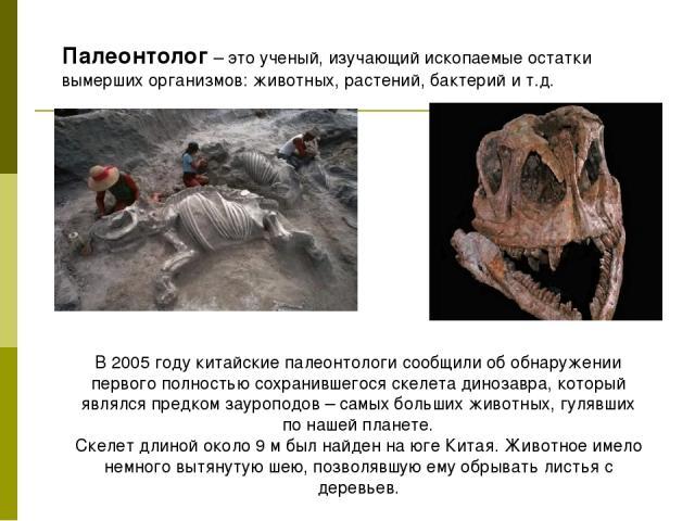Палеонтолог– это ученый, изучающий ископаемые остатки вымерших организмов: животных, растений, бактерий и т.д. В 2005 году китайские палеонтологи сообщили об обнаружении первого полностью сохранившегося скелета динозавра, который являлся предком за…