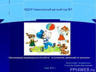 МДОУ Новоспасский детский сад №7 «Организация индивидуальной работы по развитию