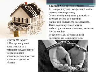 Стаття 59. Конфіскація майна 1. Покарання у виді конфіскації майна полягає в при