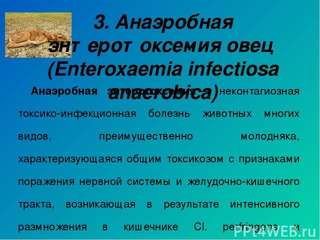 Анаэробная энтеротоксемия— неконтагиозная токсико-инфекционная болезнь животных многих видов, преимущественно молодняка, характеризующаяся общим токсикозом с признаками поражения нервной системы и желудочно-кишечного тракта, возникающая в результат…