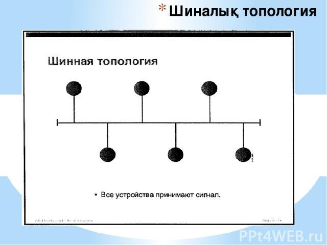 Шиналық топология