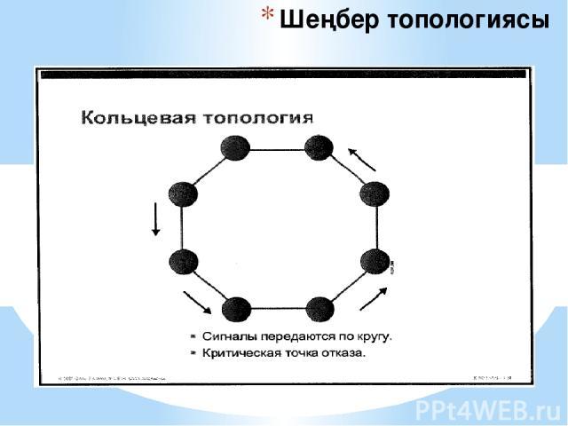 Шеңбер топологиясы