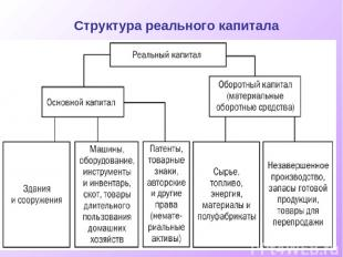 Структура реального капитала
