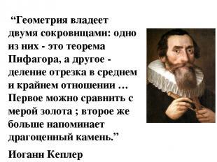 """""""Геометрия владеет двумя сокровищами: одно из них - это теорема Пифагора, а дру"""