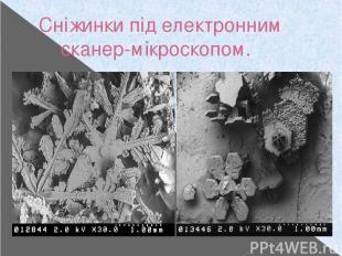 Сніжинки під електронним сканер-мікроскопом.