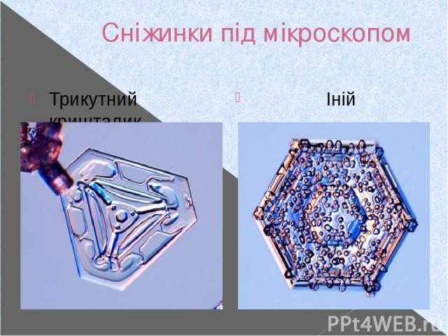Сніжинки під мікроскопом Трикутний кришталик Іній