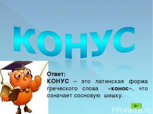 Ответ: КОНУС – это латинская форма греческого слова «конос», что означает соснов