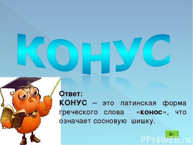 Ответ: КОНУС – это латинская форма греческого слова «конос», что означает сосновую шишку.