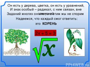 Он есть у дерева, цветка, он есть у уравнений, 2х + 5 = 3 КОРЕНЬ И знак особый –