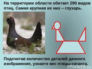 На территории области обитает 290 видов птиц. Самая крупная их них – глухарь. По