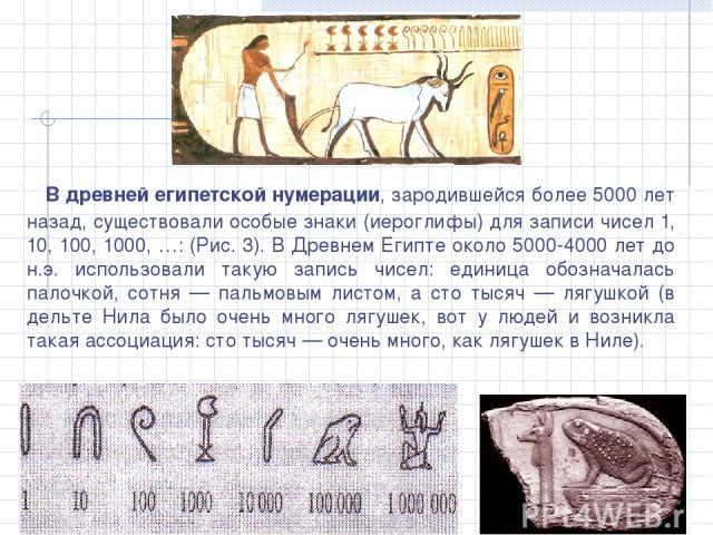 В древней египетской нумерации, зародившейся более 5000 лет назад, существовали особые знаки (иероглифы) для записи чисел 1, 10, 100, 1000, …: (Рис. 3). В Древнем Египте около 5000-4000 лет до н.э. использовали такую запись чисел: единица обозначала…