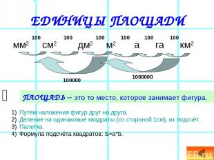 ЕДИНИЦЫ ПЛОЩАДИ мм2 см2 дм2 м2 а га км2 ПЛОЩАДЬ – это то место, которое занимает
