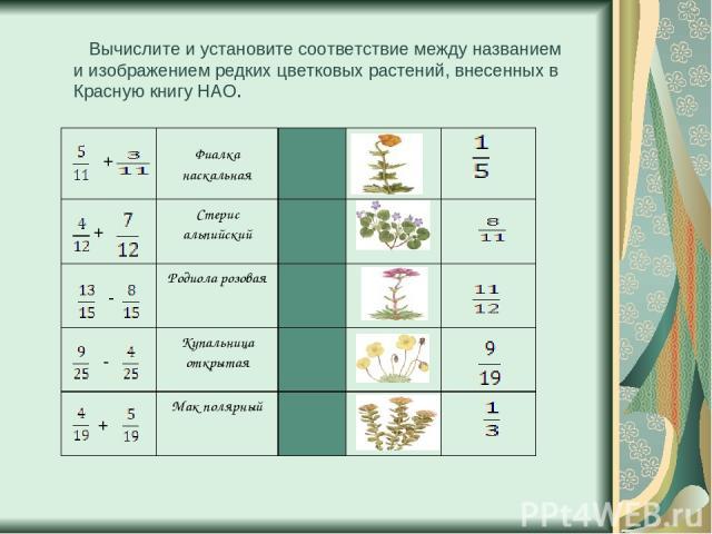 Вычислите и установите соответствие между названием и изображением редких цветковых растений, внесенных в Красную книгу НАО. + Фиалка наскальная + Стерис альпийский - Родиола розовая - Купальница открытая + Мак полярный