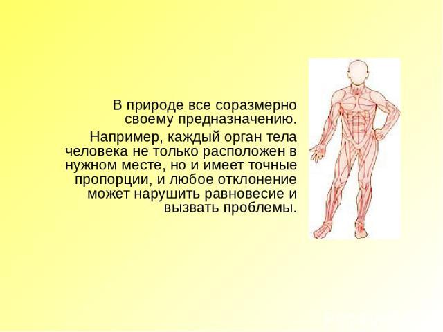 В природе все соразмерно своему предназначению. Например, каждый орган тела человека не только расположен в нужном месте, но и имеет точные пропорции, и любое отклонение может нарушить равновесие и вызвать проблемы.