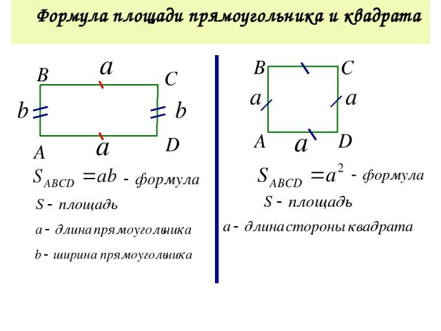 Найдите площадь прямоугольника 4 см 6 см S = a · b а-длина, b-ширина