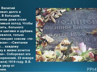 Умирал Василий Васильевич долго и тяжело. В большом, нетопленом доме стоял несте