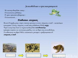 Земноводные и пресмыкающиеся Развитие лягушек Весной в пруду, реке, озере слышны