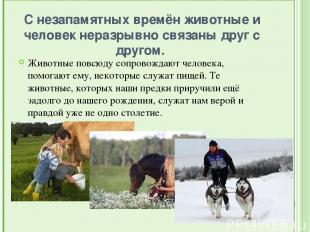 С незапамятных времён животные и человек неразрывно связаны друг с другом. Живо