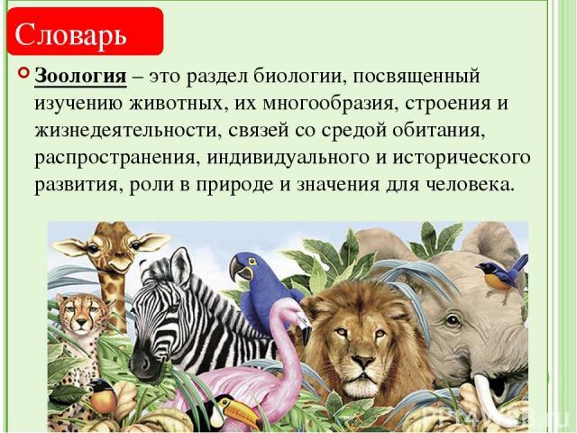 Зоология – это раздел биологии, посвященный изучению животных, их многообразия, строения и жизнедеятельности, связей со средой обитания, распространения, индивидуального и исторического развития, роли в природе и значения для человека. Словарь