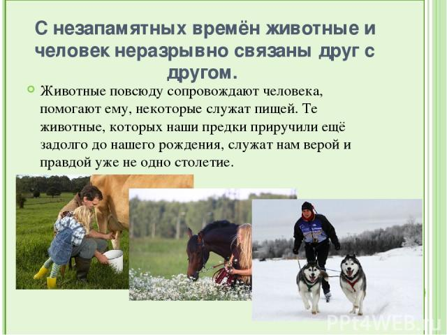 С незапамятных времён животные и человек неразрывно связаны друг с другом. Животные повсюду сопровождают человека, помогают ему, некоторые служат пищей. Те животные, которых наши предки приручили ещё задолго до нашего рождения, служат нам верой и п…
