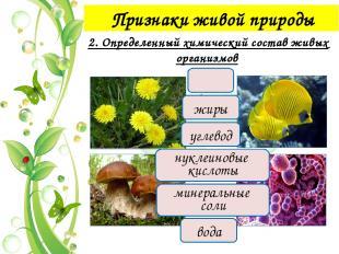 Признаки живой природы 4. Раздражимость Раздражимость – способность организма р