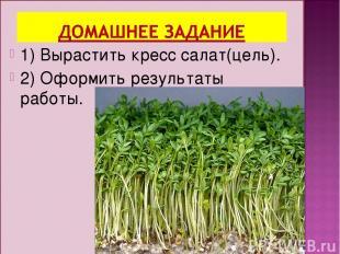 1) Вырастить кресс салат(цель). 2) Оформить результаты работы.