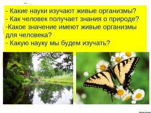 - Какие науки изучают живые организмы? - Как человек получает знания о природе?