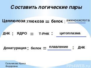 Составить логические пары Целлюлоза : глюкоза = белок : аминокислота ДНК : ЯДРО