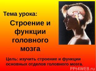 Строение и функции головного мозга Цель: изучить строение и функции основных отд