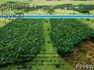 Экология (экос – дом, логос - наука) Наука о взаимоотношениях организмов между с