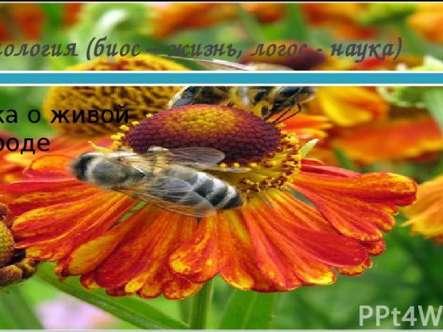 Биология (биос – жизнь, логос - наука) Наука о живой природе