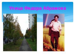 Улица Федора Абрамова