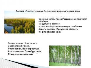 Россияобладает самыми большими вмире запасами леса Основные запасылесов Росси