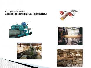 а переработкой – деревообрабатывающие комбинаты