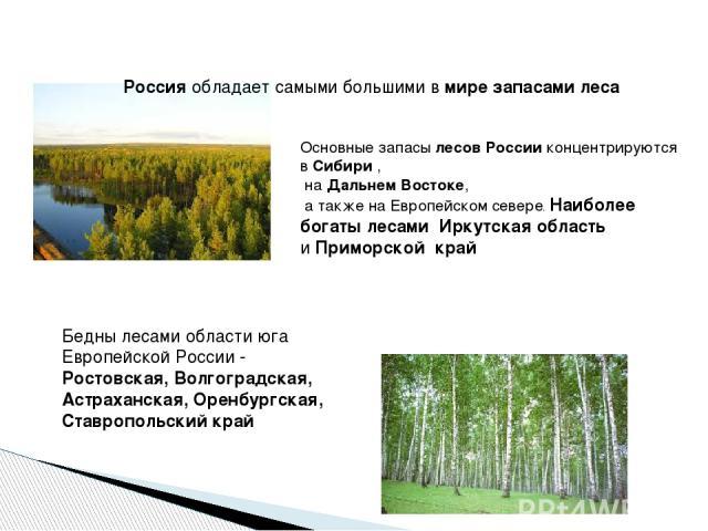 Россияобладает самыми большими вмире запасами леса Основные запасылесов Россииконцентрируются вСибири, наДальнем Востоке, а также на Европейском севере. Наиболее богаты лесами Иркутская область иПриморской край Бедны лесами области юга Европ…