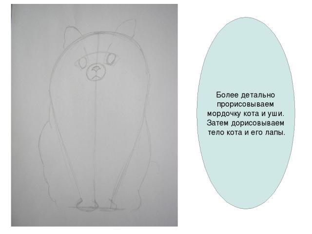 Более детально прорисовываем мордочку кота и уши. Затем дорисовываем тело кота и его лапы.