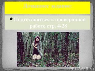 Подготовиться к проверочной работе стр. 4-28 Домашнее задание: