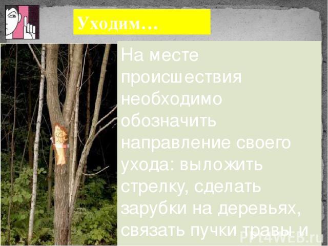 Уходим… На месте происшествия необходимо обозначить направление своего ухода: выложить стрелку, сделать зарубки на деревьях, связать пучки травы и т. п.