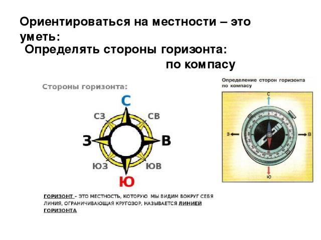 Ориентироваться на местности – это уметь: Определять стороны горизонта: по компасу