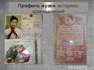 Профиль музея- историко-краеведческий