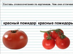 Составь словосочетания по картинкам. Чем они отличаются? красный помидор красные