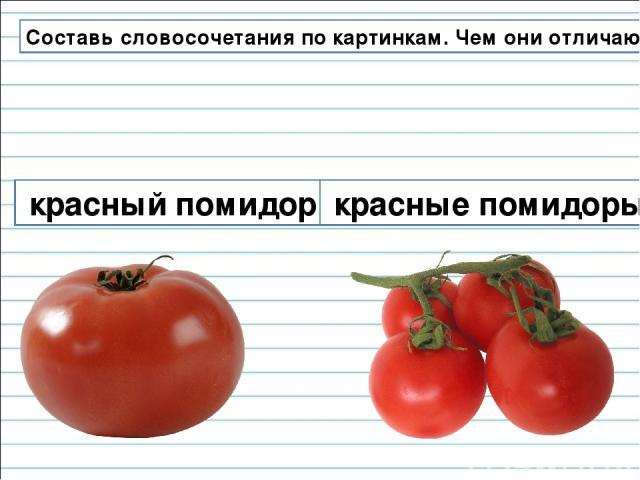 Составь словосочетания по картинкам. Чем они отличаются? красный помидор красные помидоры