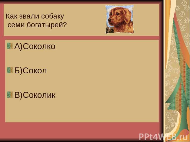 Как звали собаку семи богатырей? А)Соколко Б)Сокол В)Соколик